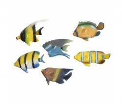 Tropen Fisch